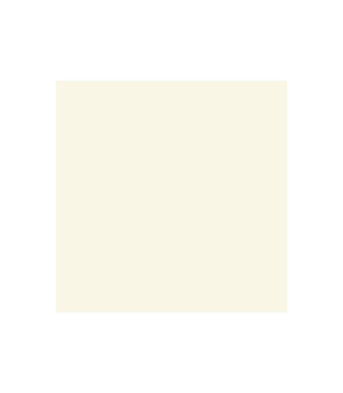 1013 RAL ΣΠΡΕΙ ΑΚΡΥΛΙΚΟ ΛΕΥΚΟ/ΠΕΡΛΑΣ 400ML